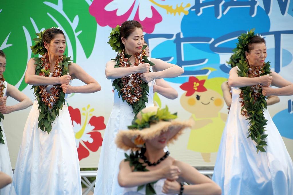 hawaii fes6-18