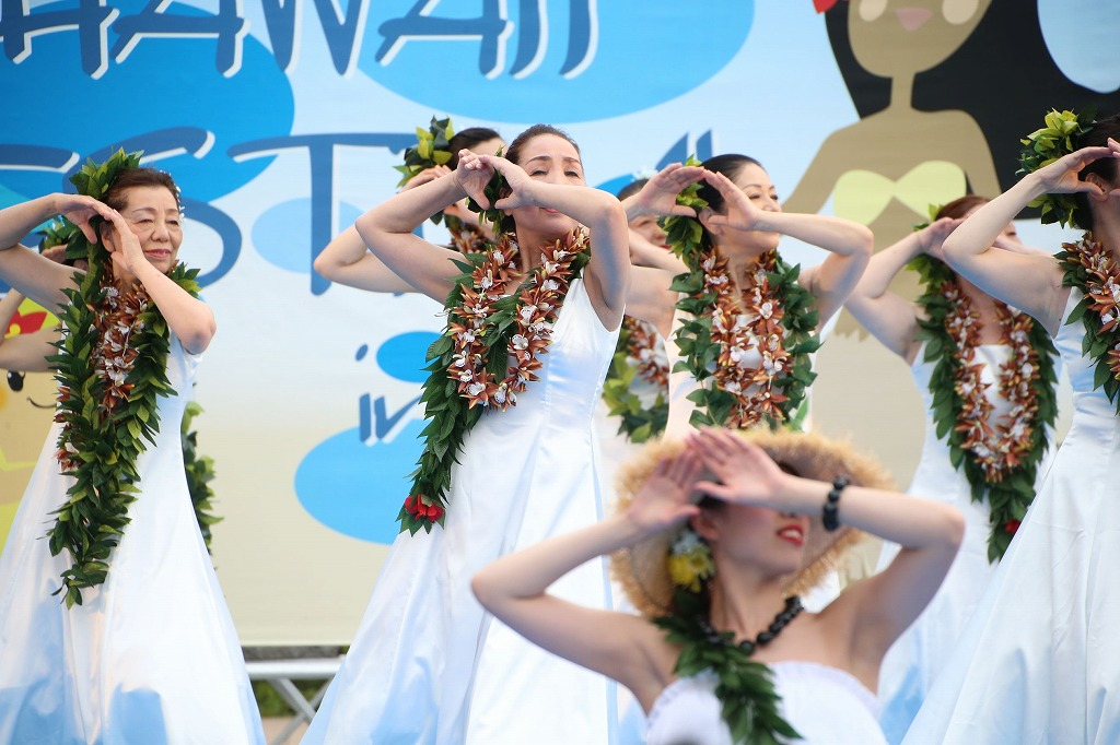 hawaii fes6-19