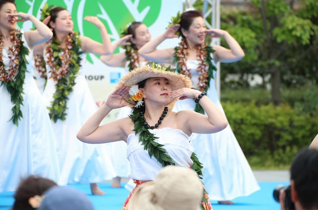 hawaii fes6-20