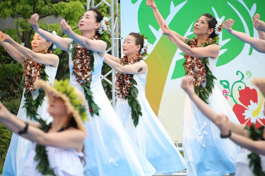 hawaii fes6-28