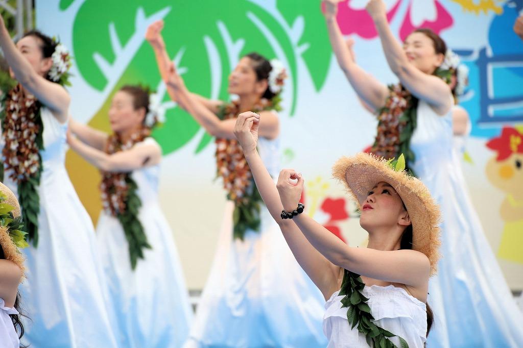 hawaii fes6-29