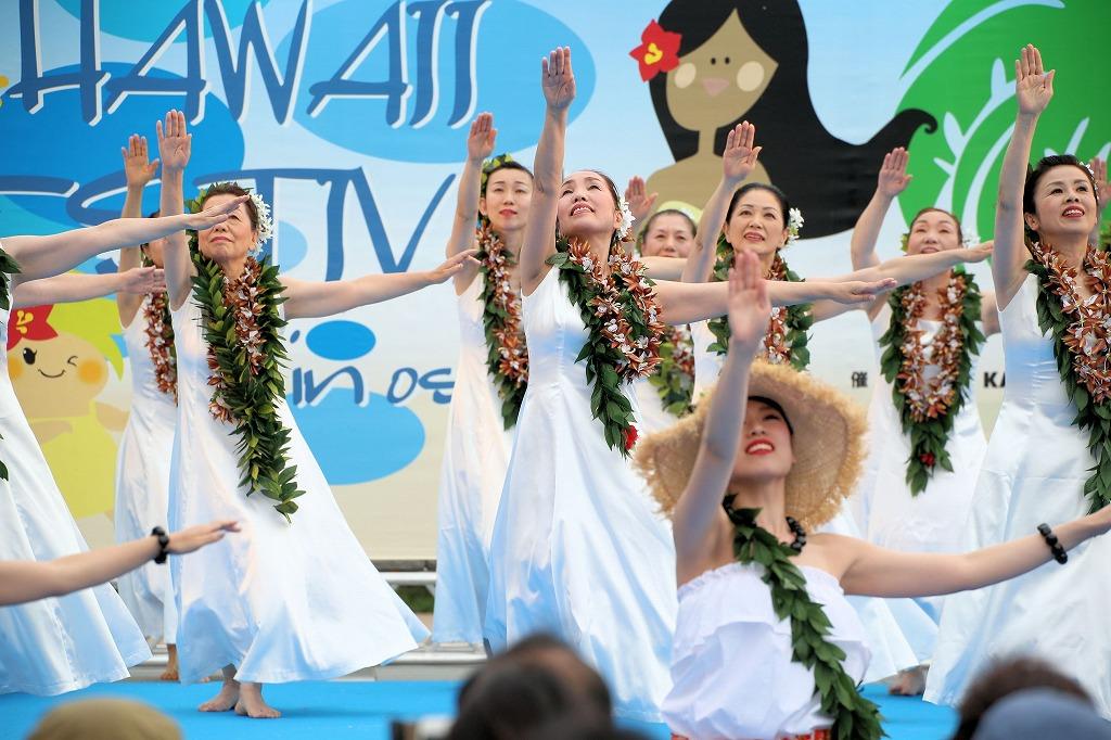 hawaii fes6-31