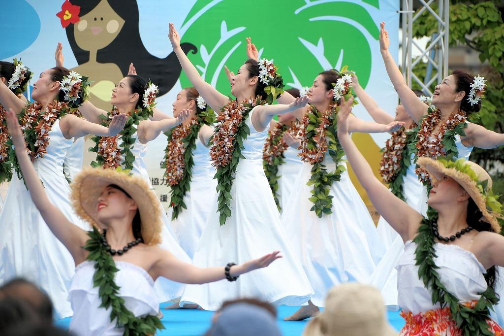 hawaii fes6-32