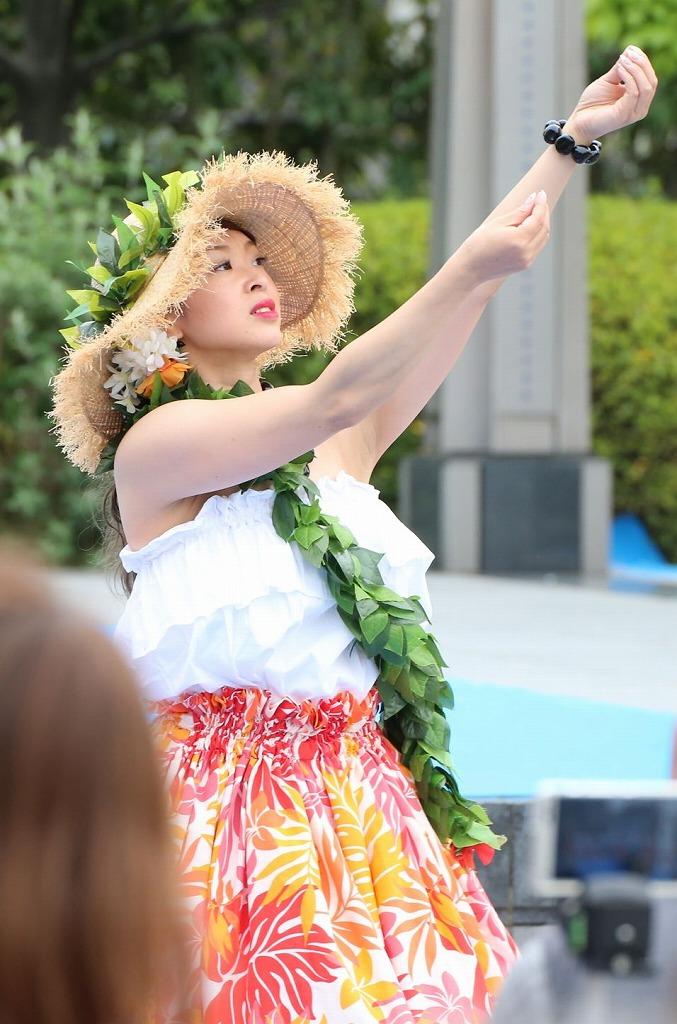 hawaii fes6-34