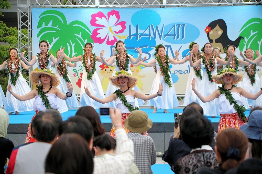 hawaii fes6-36