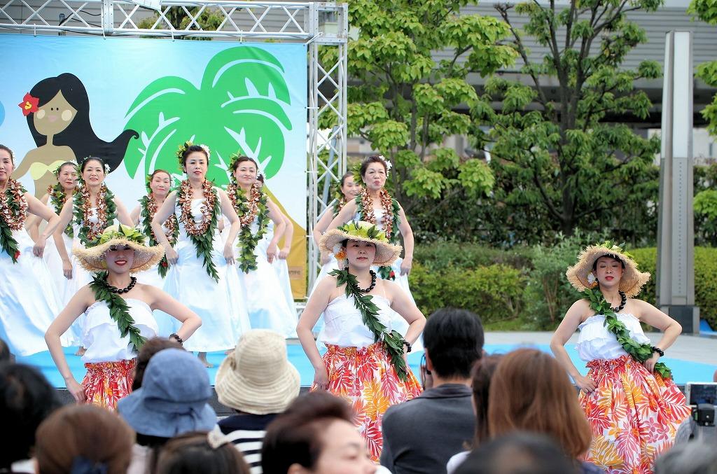 hawaii fes6-39