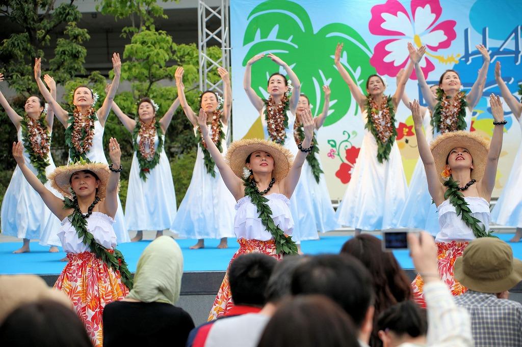 hawaii fes6-40
