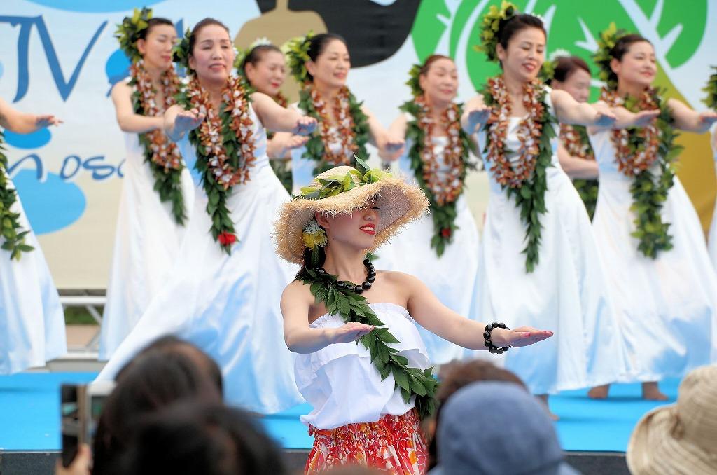 hawaii fes6-46