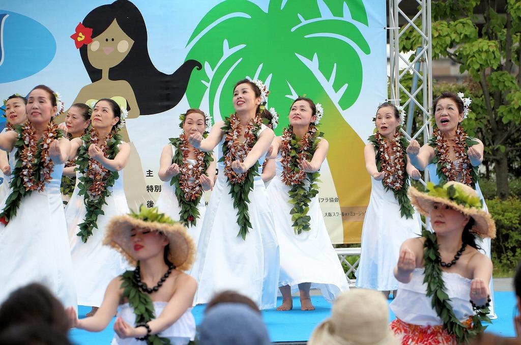 hawaii fes6-48