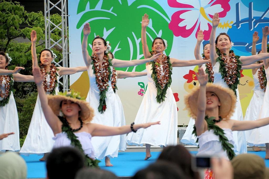 hawaii fes6-49