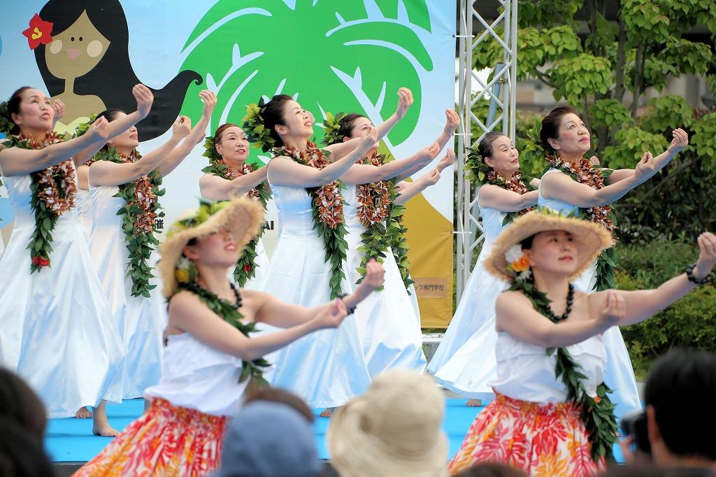 hawaii fes6-55