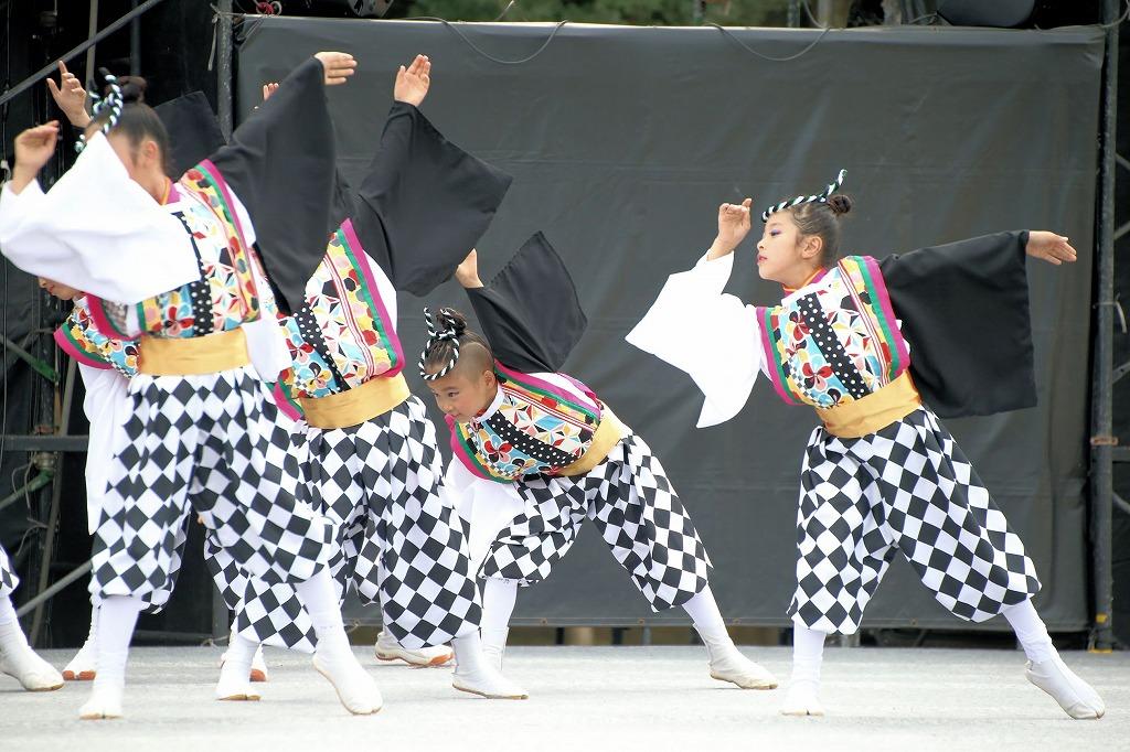 sakura koiyamain 4