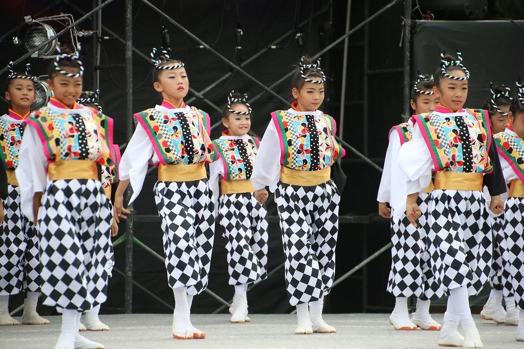 sakura koiyamain 5