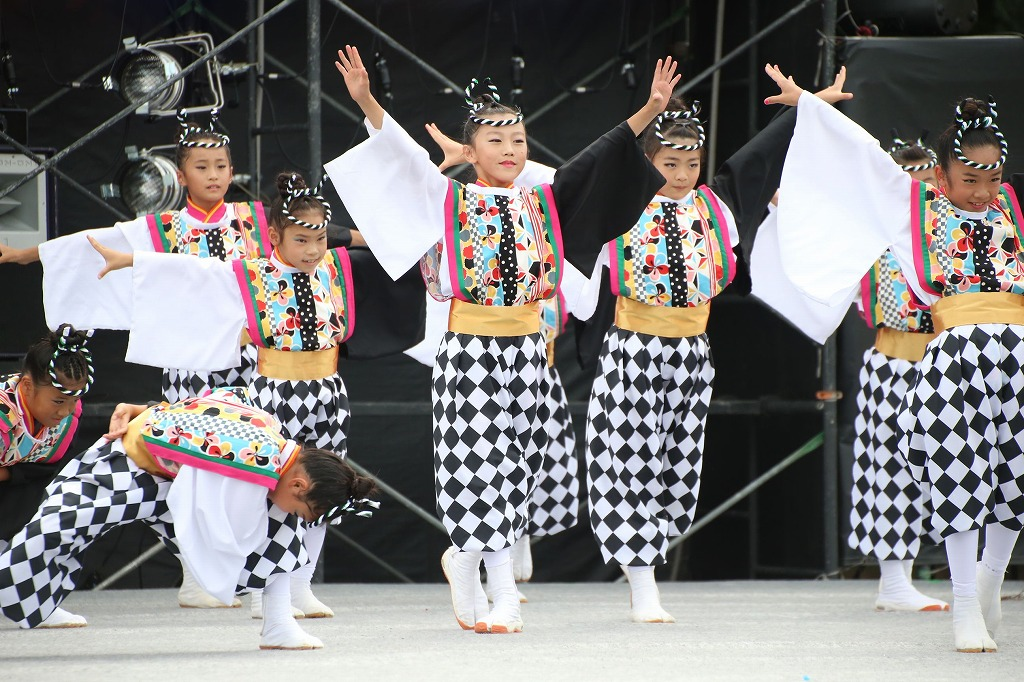 sakura koiyamain 6