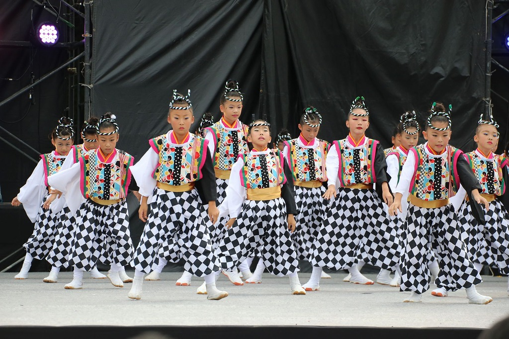 sakura koiyamain 11