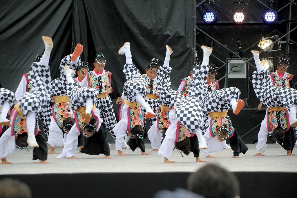sakura koiyamain 12