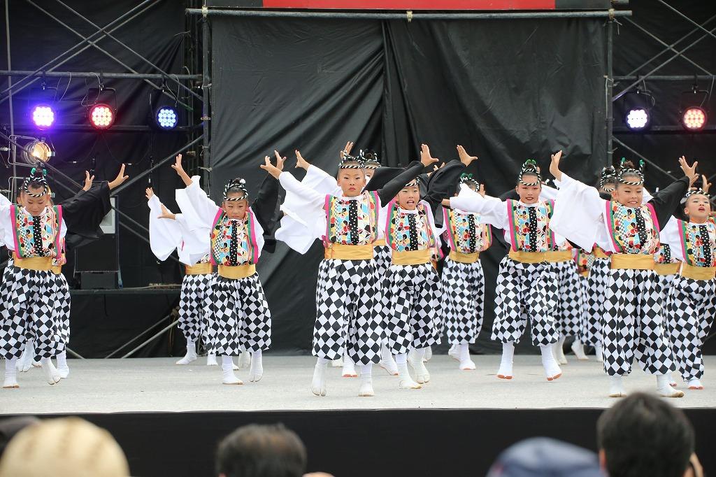 sakura koiyamain 13