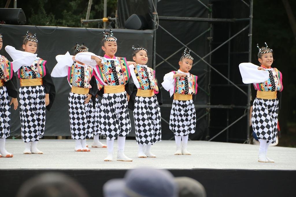 sakura koiyamain 15