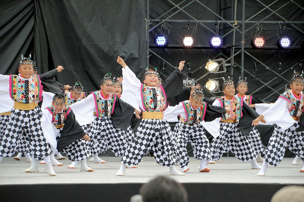 sakura koiyamain 18
