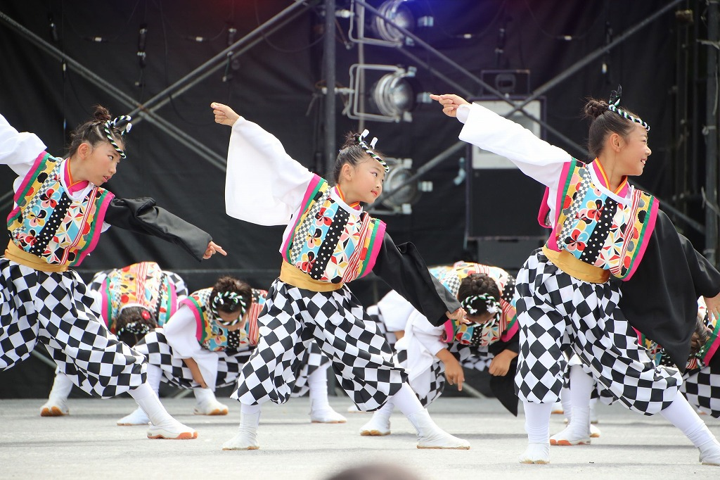 sakura koiyamain 26
