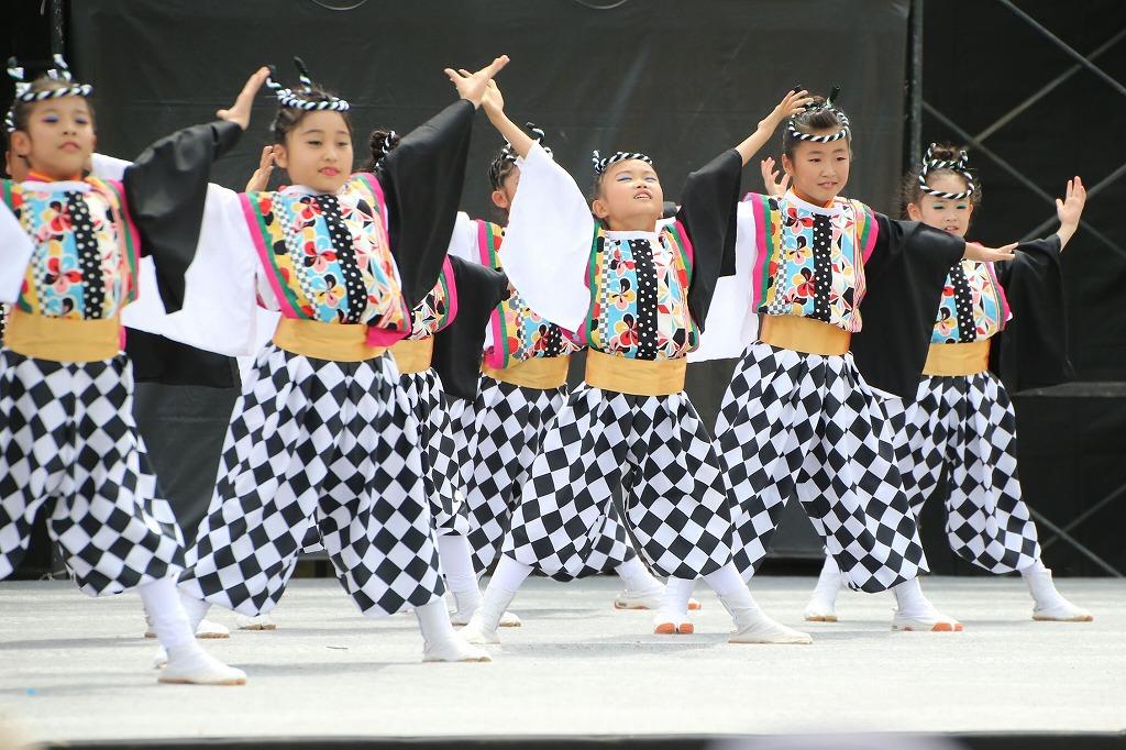 sakura koiyamain 28