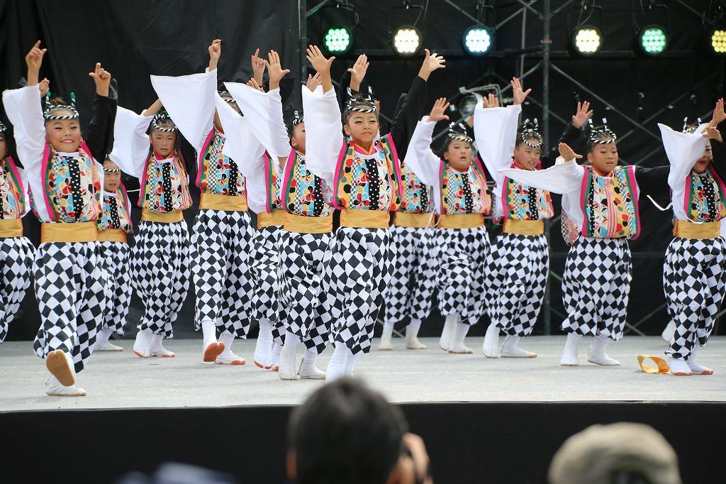 sakura koiyamain 31