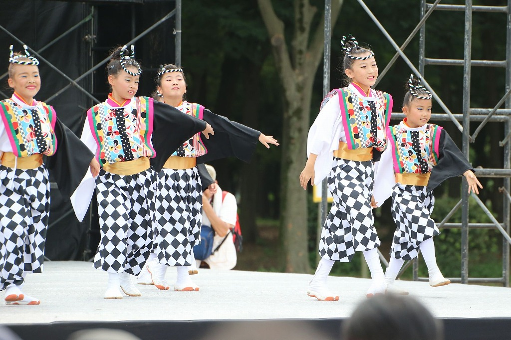 sakura koiyamain 47