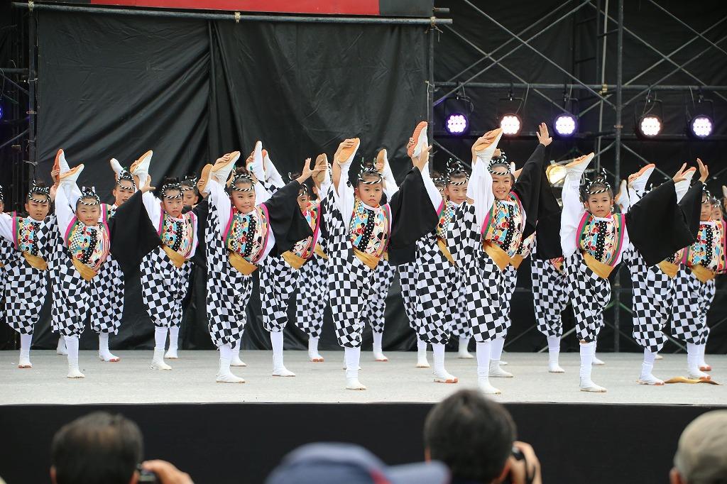 sakura koiyamain 57