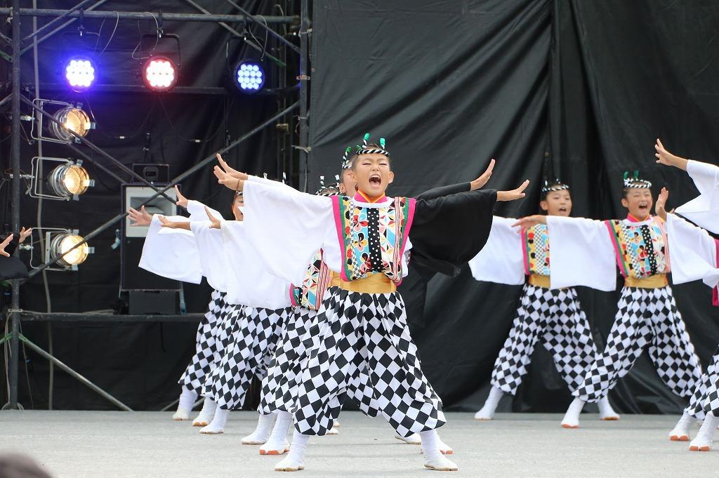 sakura koiyamain 59