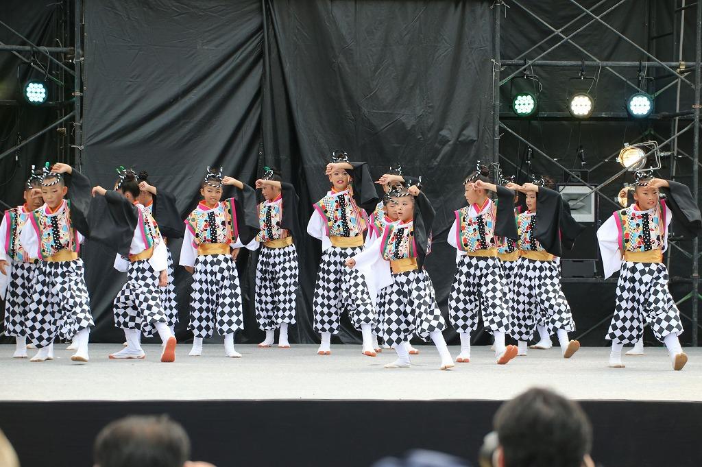 sakura koiyamain 64