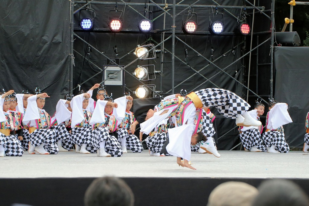 sakura koiyamain 67