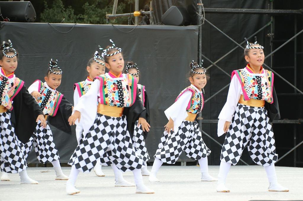 sakura koiyamain 81