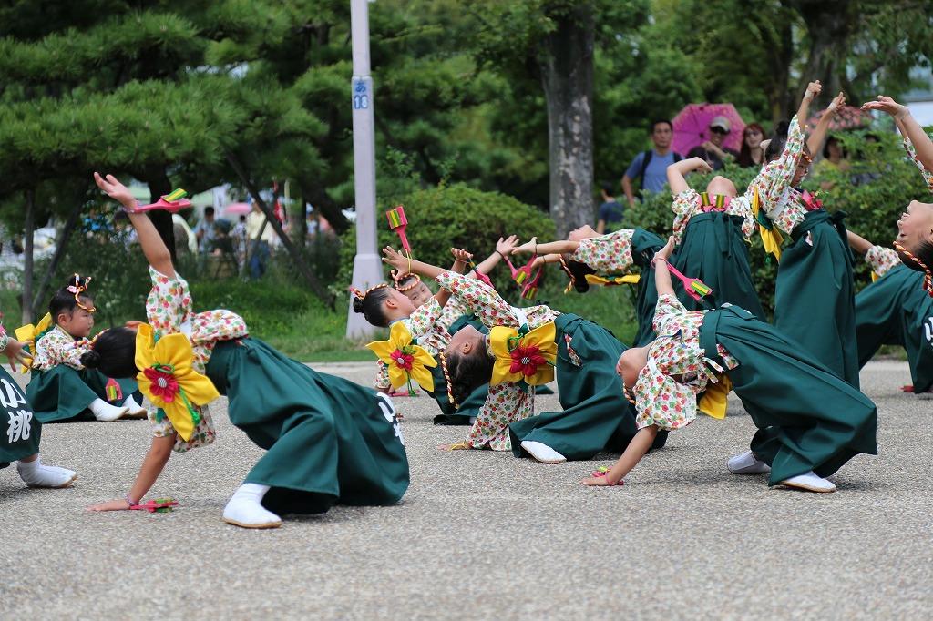 komomo koiya tenshukaku 56