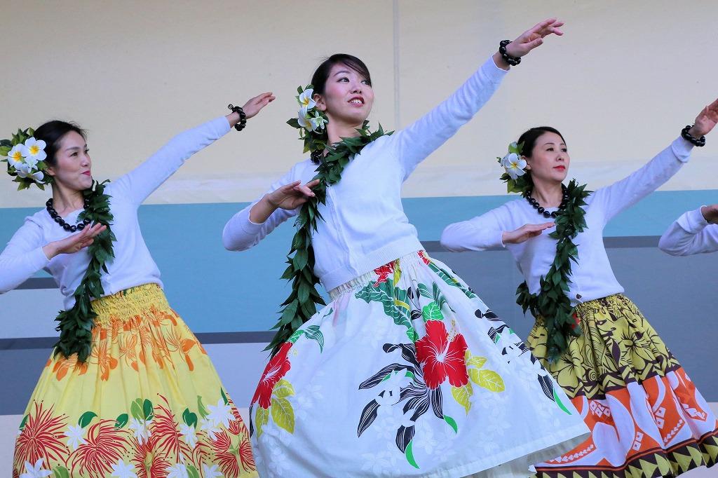 hawaii3-28.jpg