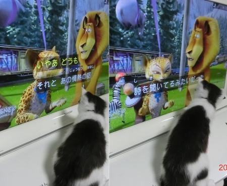 テレビ鳴穂
