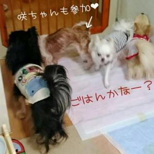 20160913211528ce1.jpg