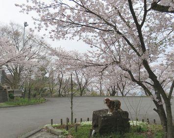 009東山公園