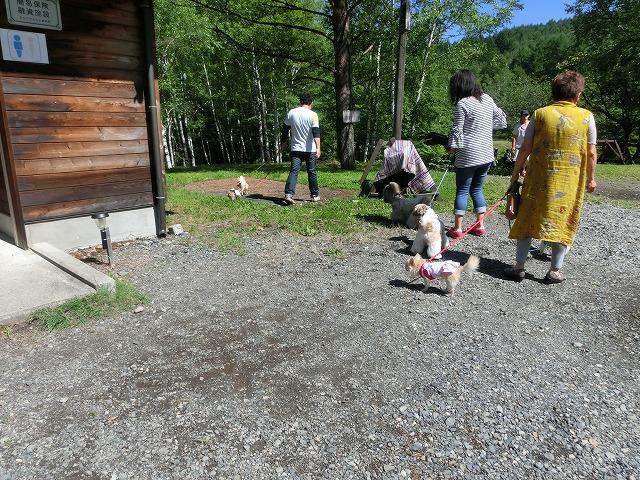ワンコと行く夏の信州2016 自宅にて 071