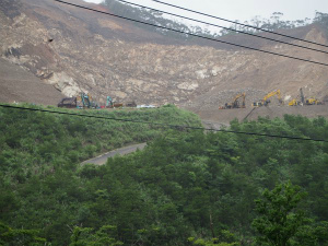 CjO6Ak8UgAEkFaa緑豊かな奄美大島の中央を走る