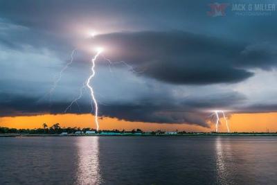 13495075_1350028日:フロリダ by © Jack Miller