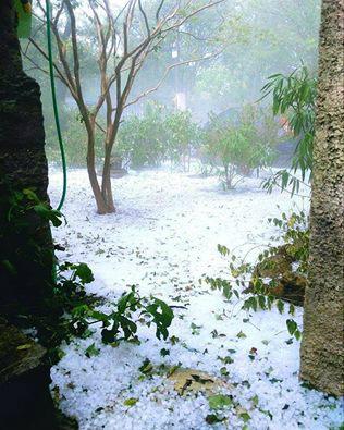 14055039_18553フランス、モンペリエでも雹