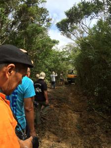CqyaGJdUAAIzy仲間と高江のN1林道を散歩していたら、