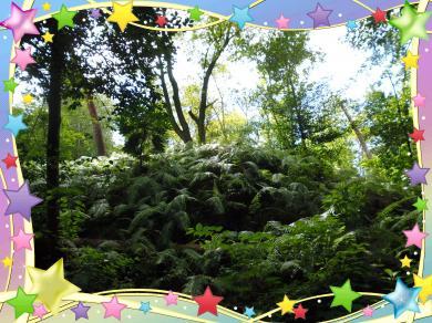 浜北森林公園2016-1