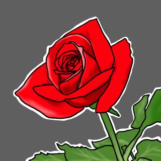 情熱のバラ