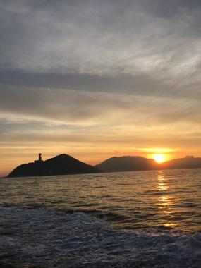 釣り スルメイカ 豊川 花屋 花夢