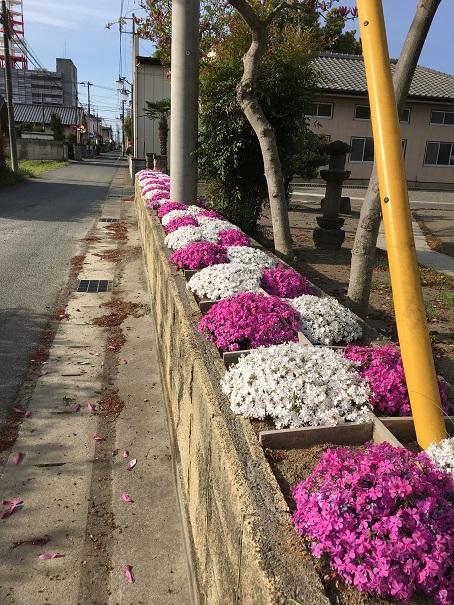 交通事故 病院 前橋 (3)