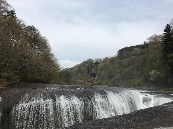 交通事故治療 前橋 (7)