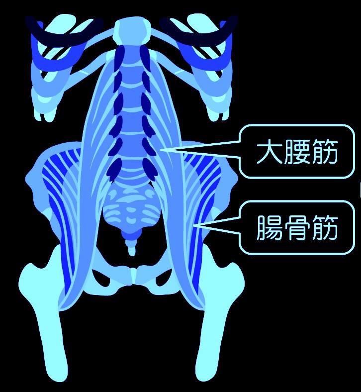 腰痛 (3)