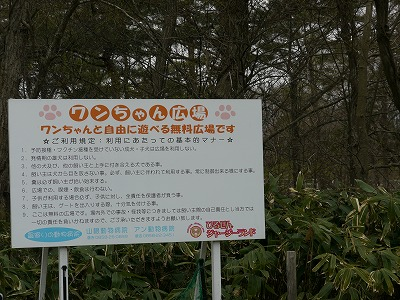 蒜山ドッグラン (9)