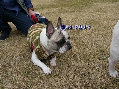 みさき公園 (5)